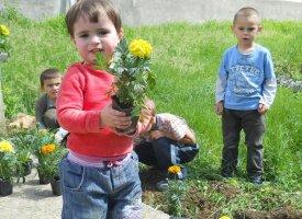 Grădina de flori din curtea şcolii